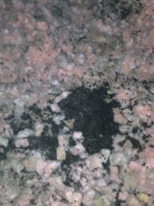 How To Get Rid Of Bats In Your Attic Greenshield Pest