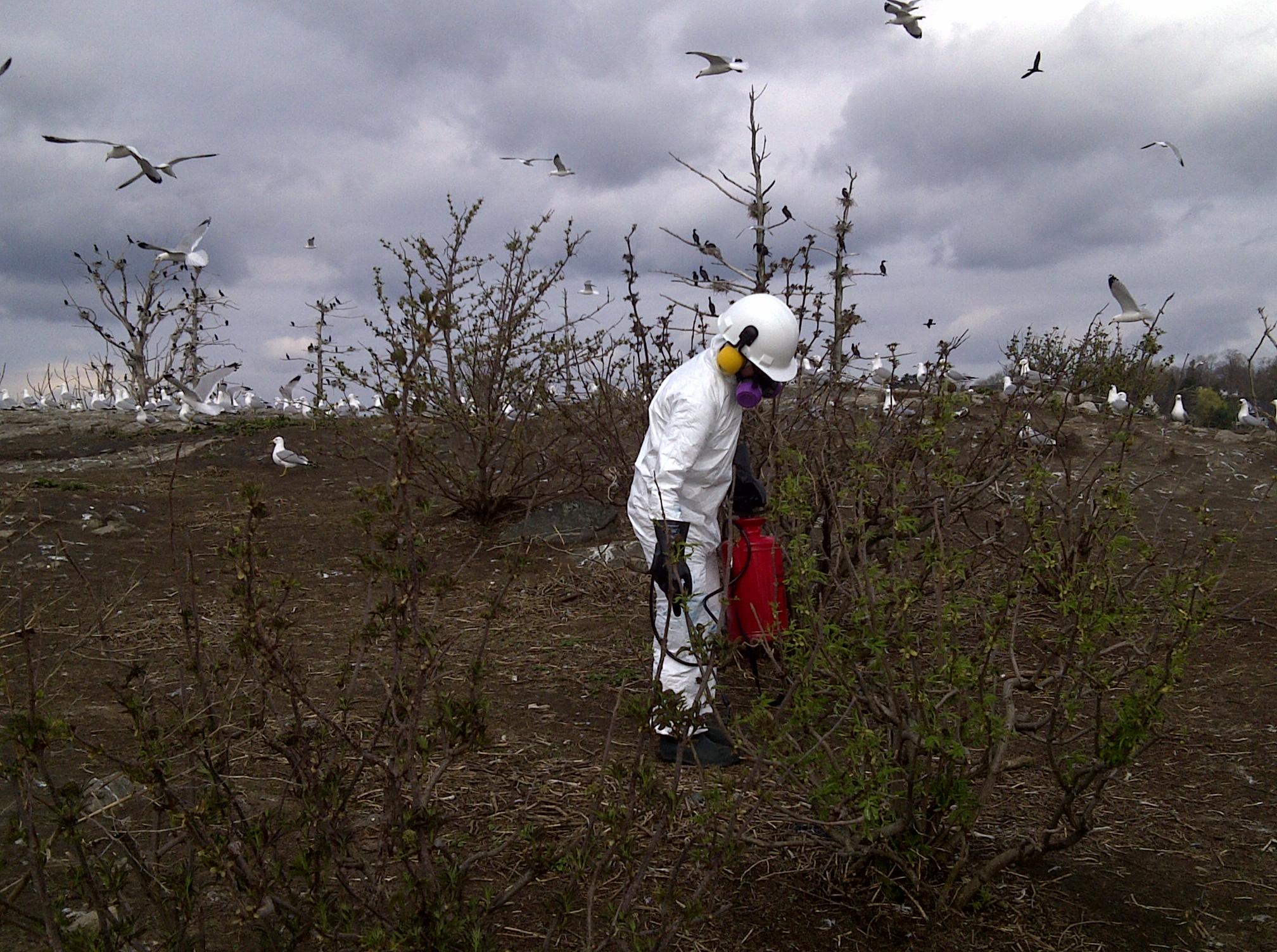 Pest Control Brockville