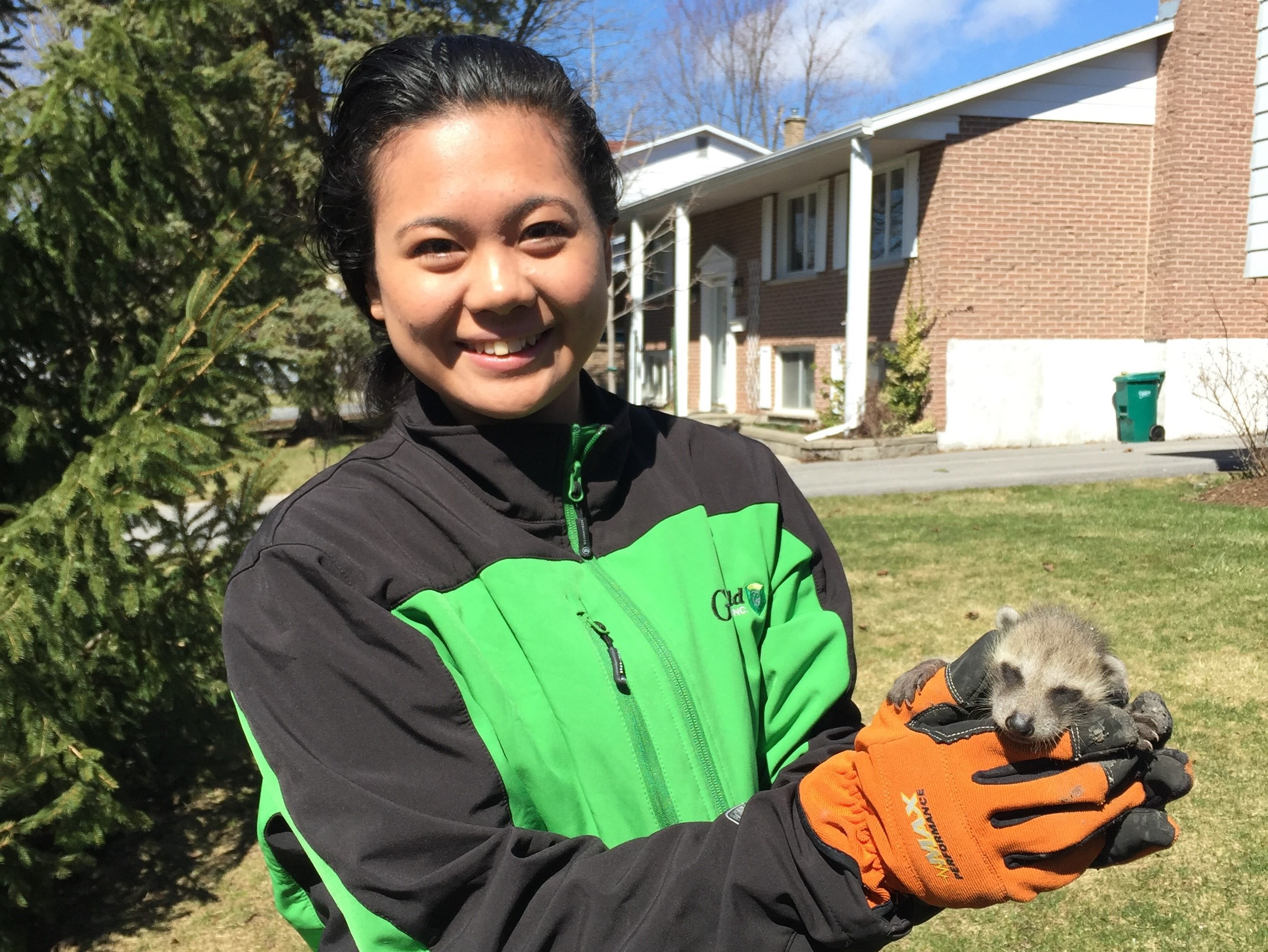 Spring in Kingston: How to Prepare for New Wildlife!
