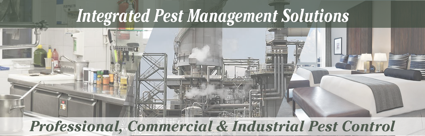 Website Banner Images Full Size NEW! Integrated Pest Control
